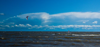 Gulf of Finland. And kite royalty free stock photos