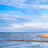 Gulf of Finland, landscape with coastal stones Stock Photos