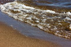 The gulf of finland. Seaside of the gulf of finland at summer sunny day Stock Image
