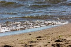 The gulf of finland. Seaside of the gulf of finland at summer sunny day Royalty Free Stock Images