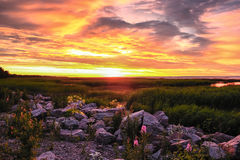 Gulf of Finland at sunset Royalty Free Stock Images