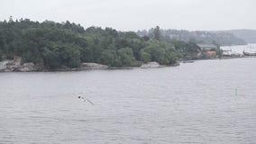 Gulf of Finland stock video