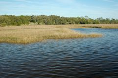 Gulf Grass Flats Royalty Free Stock Photos