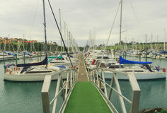 Gulf Harbour Marina, Auckland, New Zealand. Horizontal photo, photo took in New Zealand, photo is usable on picture post card, calendar, gardening Royalty Free Stock Photo