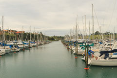 Gulf Harbour Marina, Auckland, New Zealand. Horizontal photo, photo took in New Zealand, photo is usable on picture post card, calendar, gardening Royalty Free Stock Images