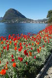 The gulf of Lugano Stock Images