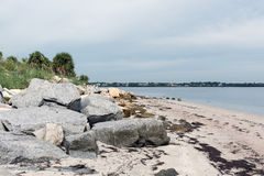 The Gulf of Mexico Coast in Fred Howard Park, Florida, USA Stock Photos