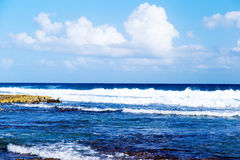Of the Gulf of Mexico Stock Image