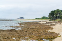 Gulf of Morbihan Stock Photo