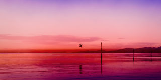 Gulf Of Paria Trinidad and Tobago panoramic seascape dawn sunset colorful scene.  Stock Photo