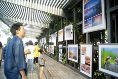 The gulf of shenzhen photography exhibition, in china Royalty Free Stock Photos