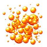 gulgocze pomarańcze ilustracja wektor