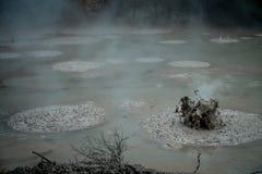 Gulgotać Borowinowego laszowanie Wodorowego siarczka gaz Geotermiczna aktywność w Waitapu, Nowa Zelandia Zdjęcie Royalty Free