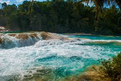 Gulgotać turkus wodę w siklawy Agua Azul, Chiapas, Palenque, Meksyk Obrazy Royalty Free