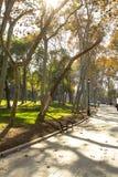 Gulhane,伊斯坦布尔公园  免版税库存照片