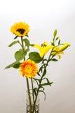 Guling blommar i en vas Fotografering för Bildbyråer