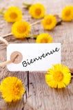 Guling blommar med Bienvenue fotografering för bildbyråer