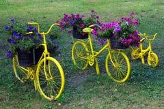 Guling cyklar med korgar av blommor Arkivbilder