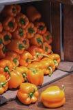 Guling pepprar i en spjällåda som visas på matfestivalen arkivfoton