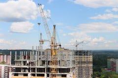 Guling sträcker på halsen på konstruktionsplatser med bostads- byggnader Arkivfoto
