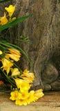 Gulingblommor och ett träd Arkivbilder