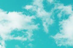 Gulingblommor och grönt gräs mot himlen fotografering för bildbyråer