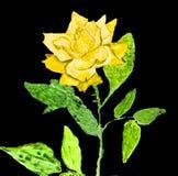 Gulingros som målar Royaltyfri Foto