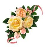 Gulingrosen blommar och slår ut sammansättning med rosa band Royaltyfria Foton