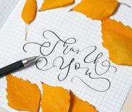 Gulingsidor och en penna på ett stycke av papper och text tackar dig Attraktion för kalligrafibokstäverhand Arkivfoto