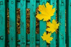 Gulingsidor som ligger på en grön bänk Royaltyfri Foto