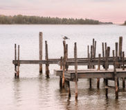 Gull And Dock. Lake Huron At Hessel Michigan, Upper Peninsula Stock Photos