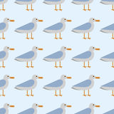 Gull flight bird and seabird sea seamless pattern vector illustration wild animal characters cute fauna tropical feather Stock Photos