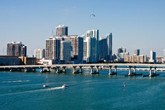 Gull Flying Over Biscayne Bay Stock Images