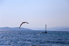 Gull and the lighthouse in the sea Royalty Free Stock Photos