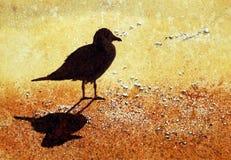 Free Gull On The Beach Royalty Free Stock Photos - 11959348