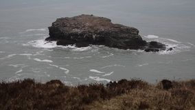 Gull rock Portreath North Cornwall England UK. Between St Agnes and Godrevy on the Heritage Coast stock footage