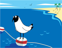Gull on the sea buoy Royalty Free Stock Images