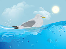 Gull on the water. Vector stock illustration