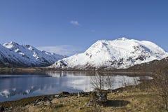 Gullesfjorden Stockfotografie