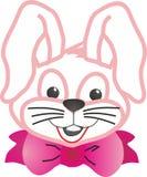 Gullig älskvärd kanin Arkivfoton