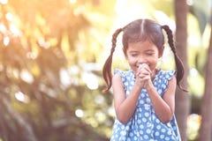 Gullig asiatisk flicka för litet barn som ber med vikt hennes hand arkivbilder