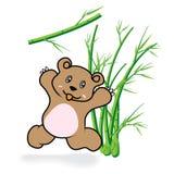 Gullig björn i bambu Forrest 05 Arkivbild