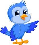Gullig blå fågeltecknad film Royaltyfri Bild