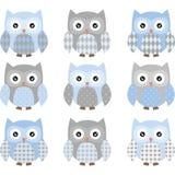 Gullig blått- och Grey Cute Owl uppsättning vektor illustrationer