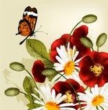 Gullig blommabakgrund med röda poppyes och chamomiles Royaltyfri Bild