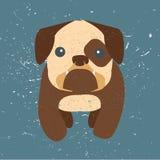 gullig bulldogg Fotografering för Bildbyråer