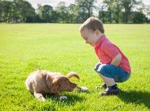 Gullig caucasian liten todderpojke som spelar med en valp på en summe royaltyfri foto