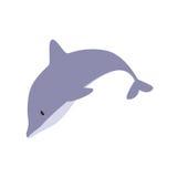 gullig delfin Royaltyfri Foto