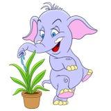 gullig elefant för tecknad film Royaltyfri Fotografi