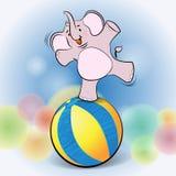 Gullig elefantlek på boll Arkivbilder